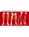 Guide to Croatian dance 2006