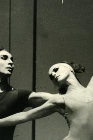 SIMPOZIJ/RADIONICA, Petar Dobrijević i Ljubinka Dobrijević – sukreatori Baleta 20. stoljeća